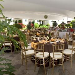 Hotel Fiesta Americana Aguascalientes Hotel Restaurantes y Bares Carousel