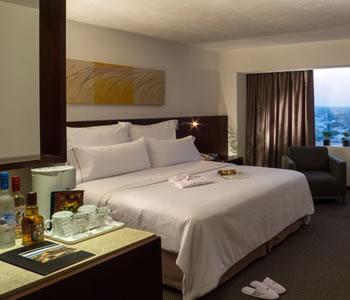 Deluxe Room, 1 king