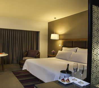Executive Room, 1 King