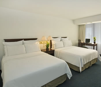 Executive Room, 2 Double