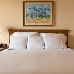 Hotel Fiesta Americana Puerto Vallarta Hotel Rooms Carousel