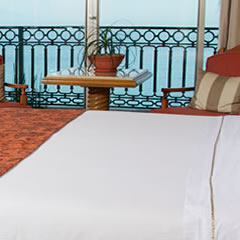 Hotel Fiesta Americana Puerto Vallarta Hotel Habitaciones Carousel