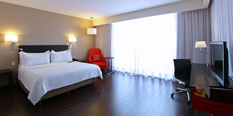 Hotel Fiesta Inn Insurgentes Viaducto Room for handicapped persons Room