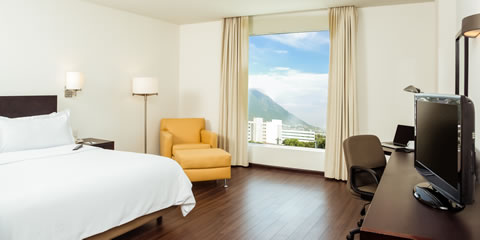 Hotel Fiesta Inn Monterrey Tecnologico Superior Room, 1 king Room