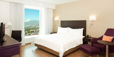 Hotel Fiesta Inn Periferico Sur Deluxe Room, 1 king Room